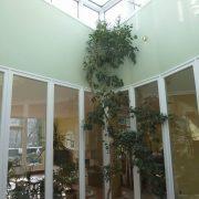 maler-wedel-hamburg-innenarbeiten-lichthof-mit-pflanze