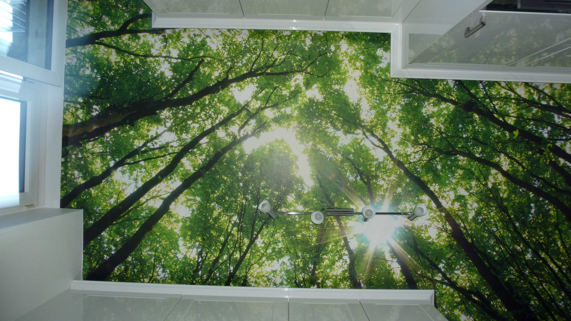 Maler Wedel Hamburg Innenarbeiten Tapete Decke Baumkronen