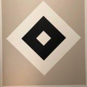 Maler-für-Wedel-und-Hamburg-Innenarbeiten-HSV-6