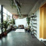 Maler-für-Wedel-und-Hamburg-Innenarbeiten-Karoline-Pflanzen